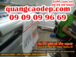 In PP giá rẻ lấy ngay tại Tân Bình