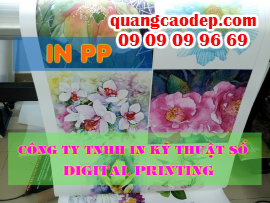 In phông nền cưới trong nhà giá rẻ với PP cán format, treo ngay ngắn trên tường nhà