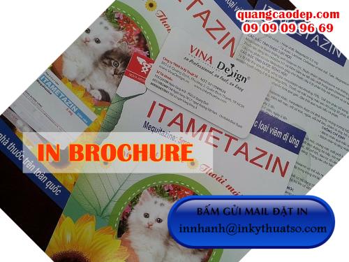 In brochure nhanh rẻ đẹp tại Công ty TNHH In Kỹ Thuật Số - Digital Printing